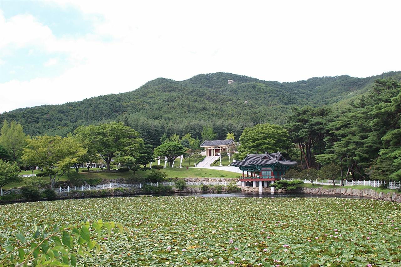 수련단지로 유명한 경주 통일전 화랑정 연못 모습
