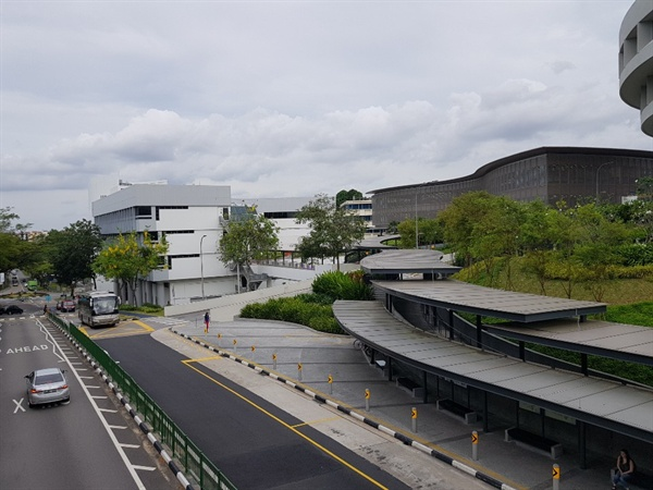 여자친구가 다니던 싱가포르의 난양공대(NTU). 싱가포르 여행 중 촬영한 사진이다.