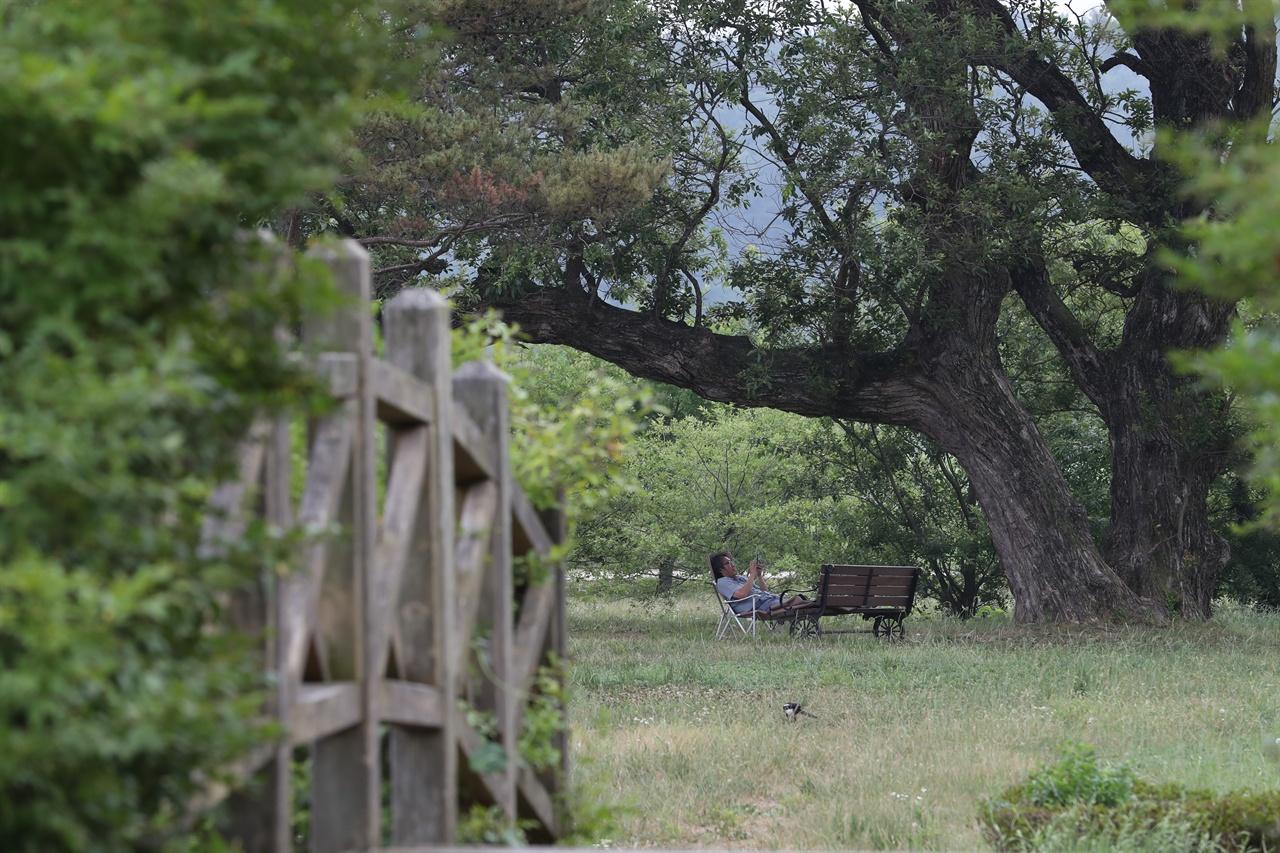 진평왕릉 인근 풀밭에서 간이의자를 펴고 망중한에 빠져보는 건 어떨까.