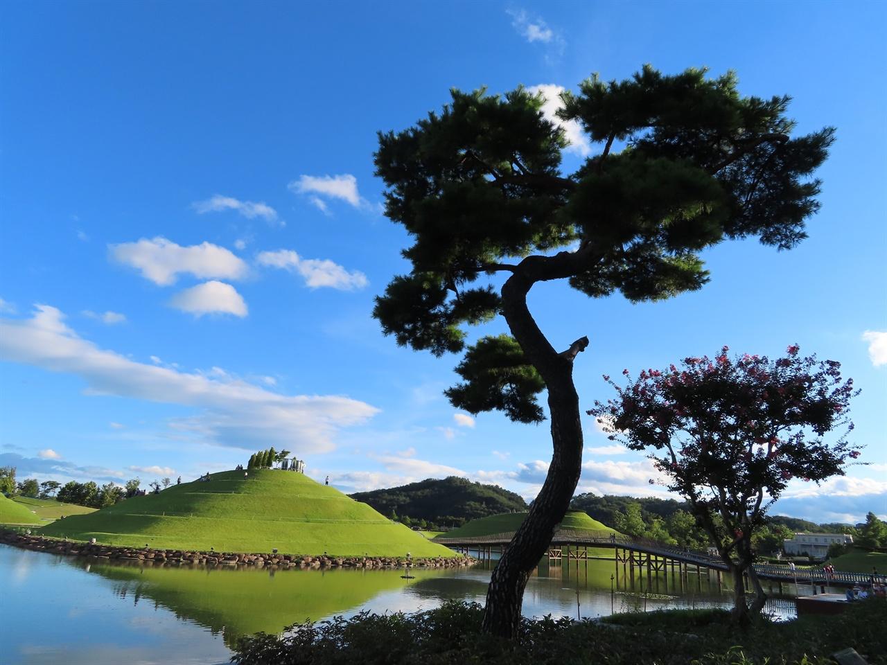 """S자 소나무 수령이 50년 정도 된, 국가정원에서 사는 """"S자 소나무""""는 순천만의 S자를 닮은 자태를 갖고 있다."""
