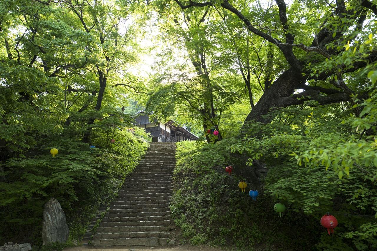 봉정사 영산암 가는 길     대웅전에서 100m정도 떨어져 있는 영산암. 영화 <달마가 동쪽으로 간 까닭은>촬영지로 유명하다.