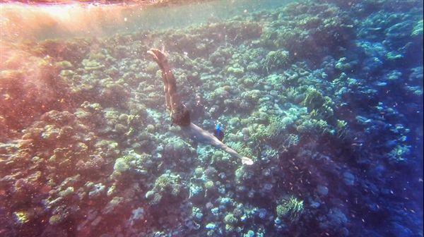 공기통 없이 해녀처럼 숨을 참고 잠수하는 프리다이빙.