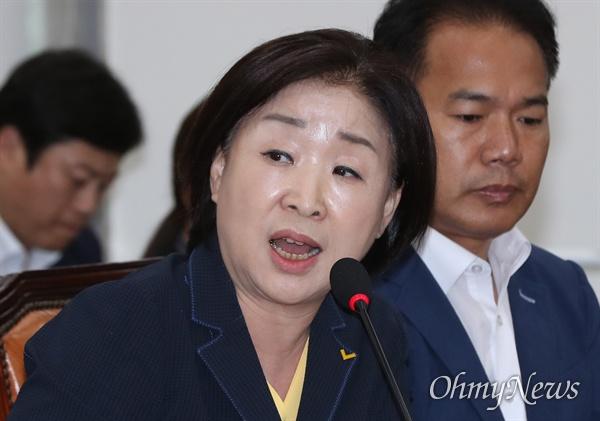 20일 오후 국회에서 열린 정치개혁특별위원회(정개특위) 전체회의에서 심상정 정의당 의원이 의사진행발언을 하고 있다.