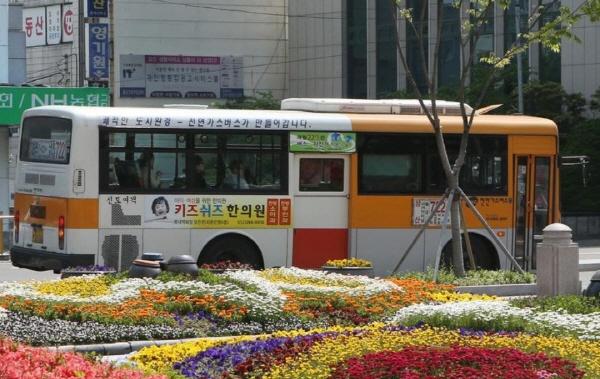 울산시청 앞을 지나는 시내버스