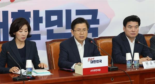 자유한국당 황교안 대표가 25일 오후 국회에서 열린 북핵외교안보특위-국가안보위원회 연석회의에서 발언하고 있다