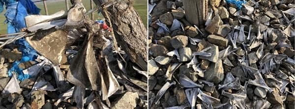 몽골 사람들이 신에게 기원하는 곳인 오보 나무 기둥 아래에는 양 어깨 뼈가 산처럼 쌓여있습니다.