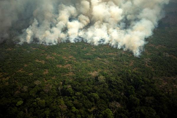 지난 23일 브라질 아마존 열대우림에 대형산불이 난 모습.