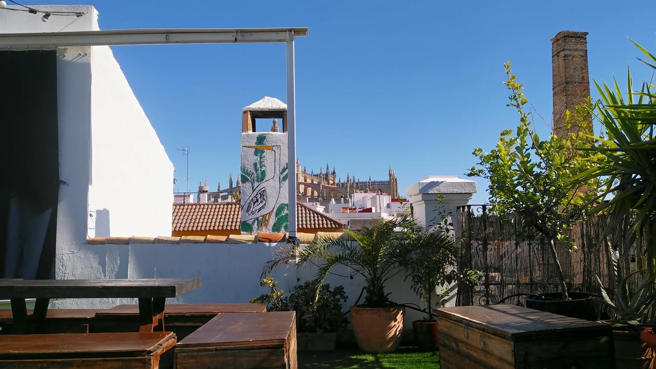 스페인 세비야 호스텔의 옥상
