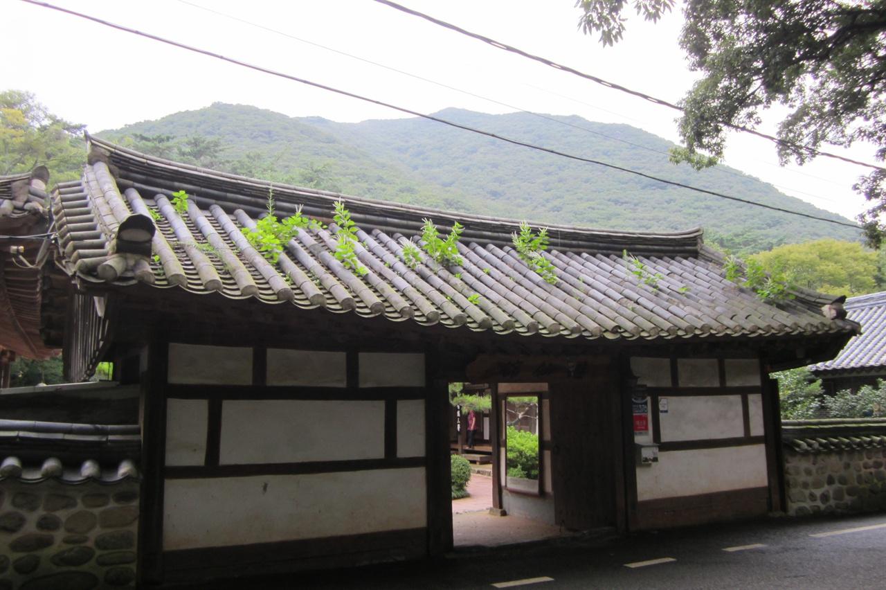 유선관 현관 지붕에 잡초가 무상하다