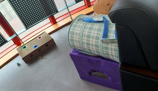 경기 A특수학교 교장실에 있는 고양이 용품.