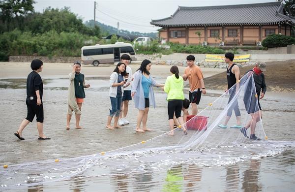 섬마을인생학교에서 그물을 치고 갯일을 하는 프로그램에 참여하고 있는 서울 청년인생설계학교의 청년들.
