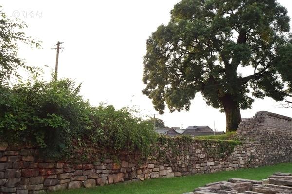 자연스럽게 복원한 성벽이 눈길을 끄는 경주읍성.