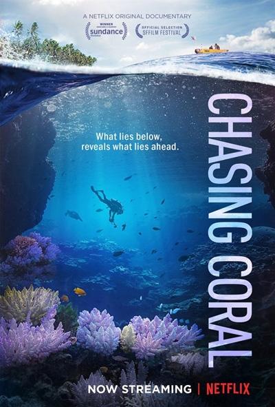 넷플릭스 오리지널 다큐멘터리 <산호초를 따라서> 포스터.