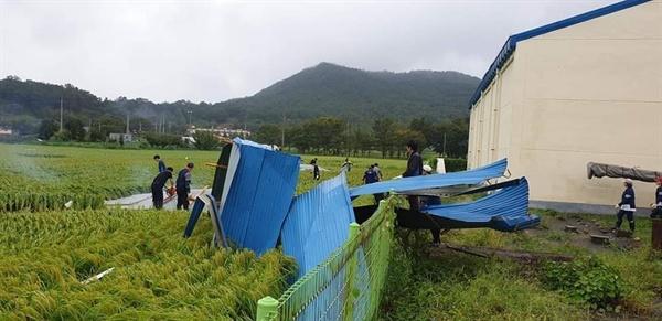 태풍이 지나고 휴일인 이날 서산시 공무원을 비롯해 자원봉사자 등은 피해지역을 중심으로 복구작업에 나섰다.