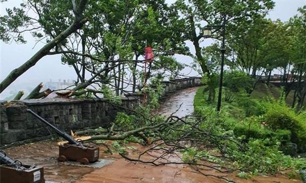 경남 진주성 (사적 118호) 태풍 링링으로 성곽 일부가 파손됐다.