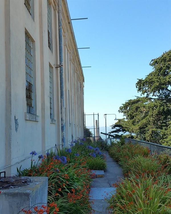 교도소 관리실 창 밑의 정원 섬에 거주했던 교도관과 그들의 가족은 정원을 가꾸고 아이들은 학교에 다니는 등 평범하게 생활하였다.