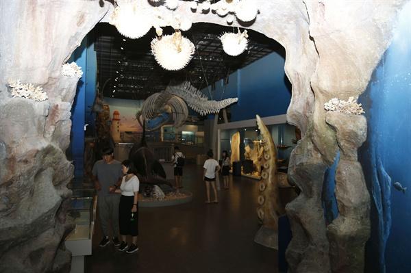 해남땅끝해양자연사박물관의 전시관. 전시관에는 화석류와 어류, 상어류, 갑각류, 남극생물표본 등 1500여 종 5만6000여 점이 전시돼 있다. 바다의 생성과 바다생물의 다양성, 미래생명의 보고인 바다를 모두 엿볼 수 있다.