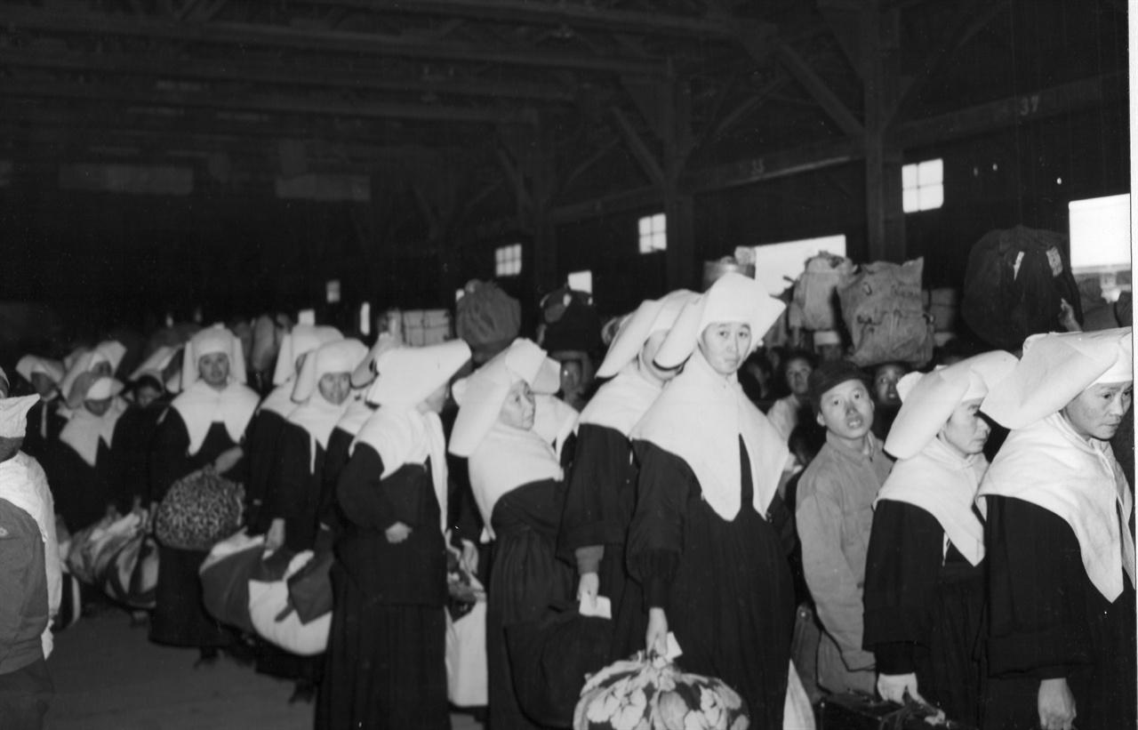 수녀들의 피란행렬(1951. 2. 8.).