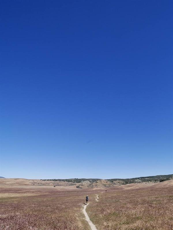 This way 사막에서의 길.