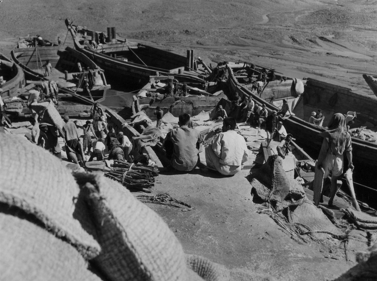 인천, 바닷물이 빠진 개펄에서 하역하는 부두노동자들(1952.10. 2.).