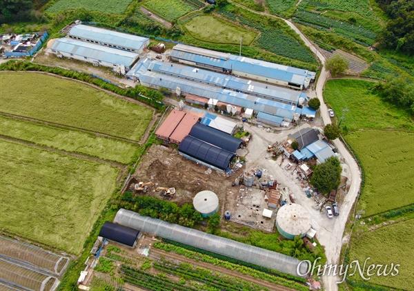 아프리카돼지열병(ASF)가 발병한 17일 오전 경기도 파주 한 농장에서 전염 우려가 있는 돼지를 살처분 하기 위해 굴삭기가 땅을 파고 있다.