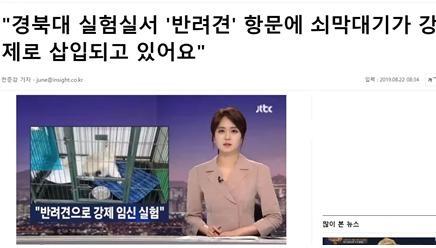 △JTBC 보도 복사해 자극적인 기사 생산한 인사이트 캡처