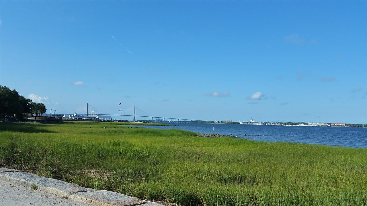 찰스턴의 바다 찰스턴 해안에서는 모래 사장보다는 습지가 형성되어 야생초들이 자라고 있다.