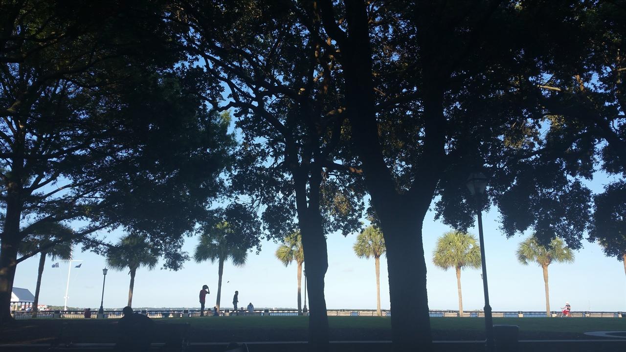 워터프런트 공원에서 바라본 모습 워터프런트 공원을 비추는 햇살이 아름답다.