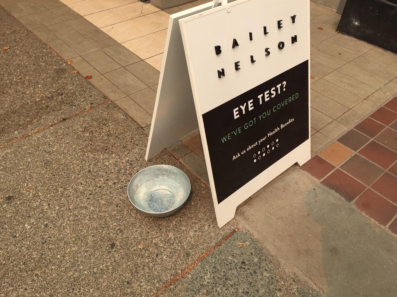 밴쿠버 우리 동네의 상점들은 아침이면 이렇게 물그릇을 내어 두었다. 지나가는 반려동물과 야생동물들을 위한 배려이다.
