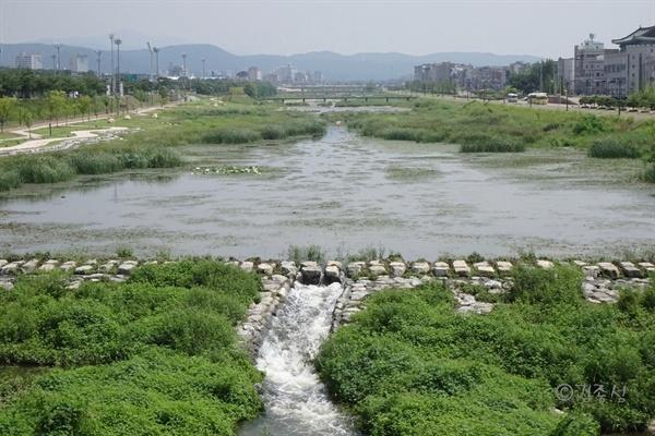 경주 도심을 지나는 풋풋한 물줄기 북천.