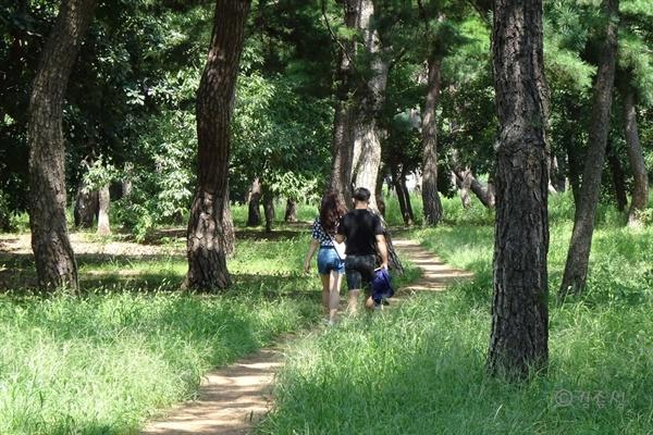 맨발 산책하기 좋은 황성공원.