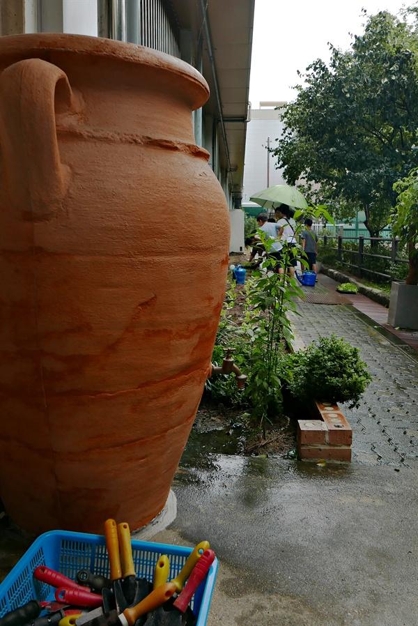 학교 건물들 사이에 정원을 다시 꾸몄다. 왼편 항아리는 빗물을 모아 모으는 중이다. 곳곳에 나무와 풀을 키우며 작은 생명들을 자라게 한다.