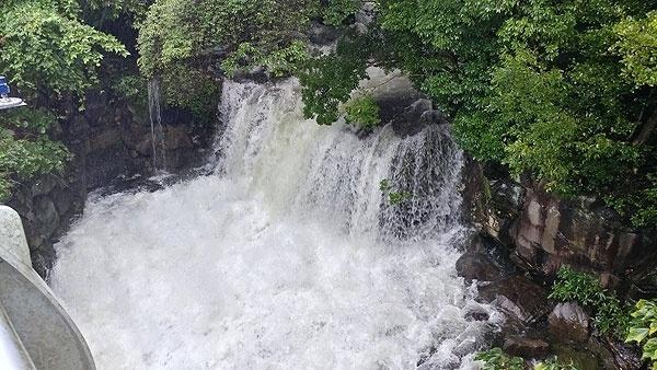 제주가 태풍 '타파'의 직접 영향권에 들면서 22일 도내 대부분 하천에 폭우로 인해 무섭게 물줄기가 흘러내리고 있다. 산록남로 제9산록교 아래로 집어삼킬듯한 물줄기가 폭포를 만들어냈다. 이번 태풍으로 제주에 많은 곳은 700mm가 넘는 비가 예보됐다.