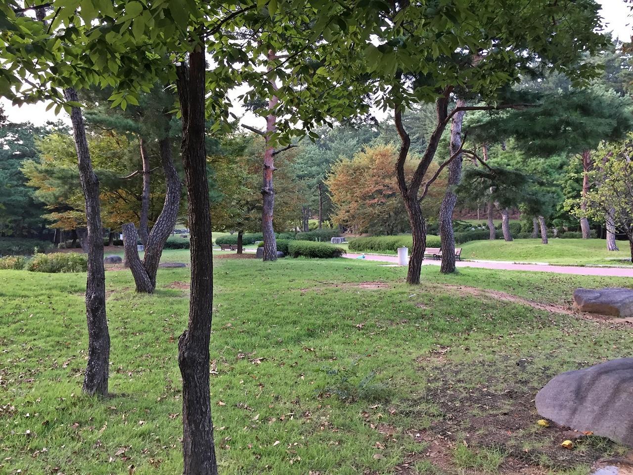 가족단위 피크닉 명소로 유명한 경주 흥무공원 모습