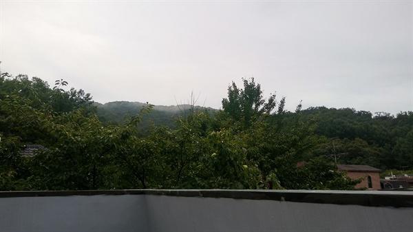 옥상에서 바라본 산 이사한 집은 분당 어느 산 바로 아래에 있다.