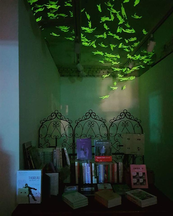 One Table Bookstore 서울 홍대 경의선숲길에 있는 카페 한 켠에 세상에서 가장 작은 책방이 있다