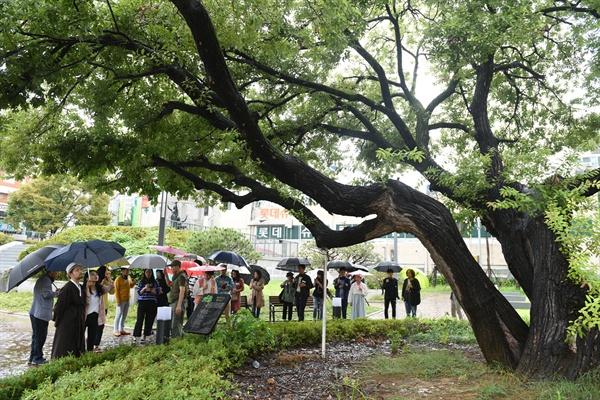 옛 대전형무소 터에 남겨진 왕버들 '평화의 나무' 주변에서 배우들의 연기를 참가자들이 지켜보고 있다.