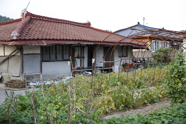평온한 분위기의 상동마을 풍경. 집 마당에 고추가 가득 하다.