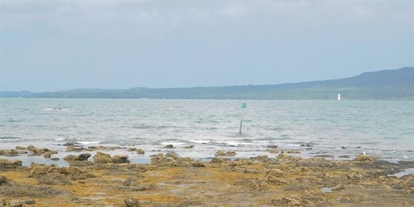 캠핑장에서 바라본 바다 풍경.