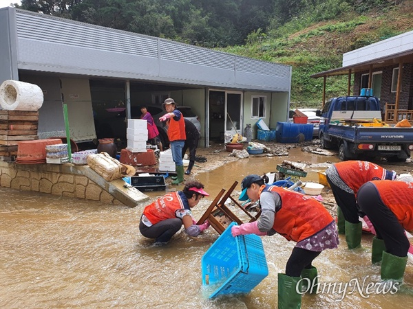 대구시 자원봉사자들이 4일 태풍 '미탁'으로 피해를 입은 경북 울진군 기성면 현장을 찾아 피해복구를 지원하고 있다.