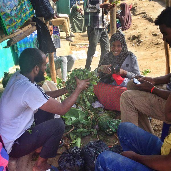 에티오피아 남부 국경마을 모얄레 시장. 토종식물 '까트 (Khat)' 를 다듬는 상인들