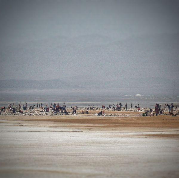 에티오피아 북동부 다나킬 저지대 소금호수의 광부들
