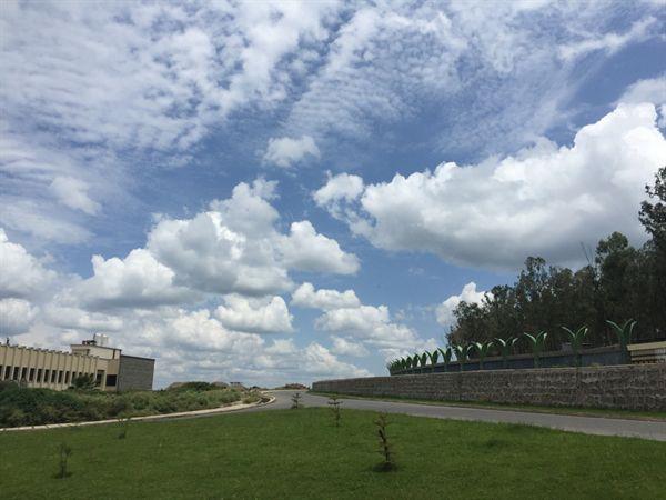 강도를 당하기 직전, 아와사 타보르 공원의 푸른 하늘이 예뻐 사진을 찍었다. 사진 오른쪽, 도로에서 불과 40여 미터 떨어진 공원에서 강도를 만날 줄이야