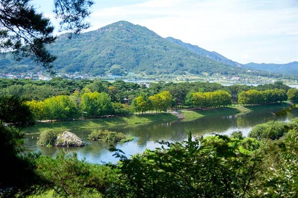 양산팔경의 제2경 강선대에서 내려다본 금강. 강 건너 숲이 송호관광지의 야영장 등이다.