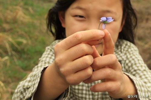 우리 입과 손에서 흘러나오는 말이 들꽃처럼 '꽃글'이나 '꽃말'이 될 수 있기를 빌어 마지 않습니다.