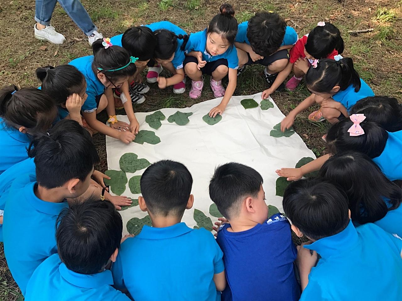 서천 송석초 병설유치원 유아들이 학교 주변에 있는 희리산에서 숲 체험을 하고 있다. 이 유치원은 원아가 모두 4명이다. 하지만 숲 체험 거점 학교를 운영하면서 인근 유치원 또래 친구들과 공동 수업을 하고 있다.