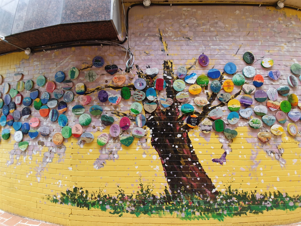 3.15 희망나무. 창동골목골목 어귀와 가게마다 작고 예쁜 화분과 나무들이 자태를 뽐낸다. 마산사람들이 3.15 마산의거를 기념하기 위해 십시일반  기금을 모아 골목을 정원으로 만들어 가꾸고 있다.