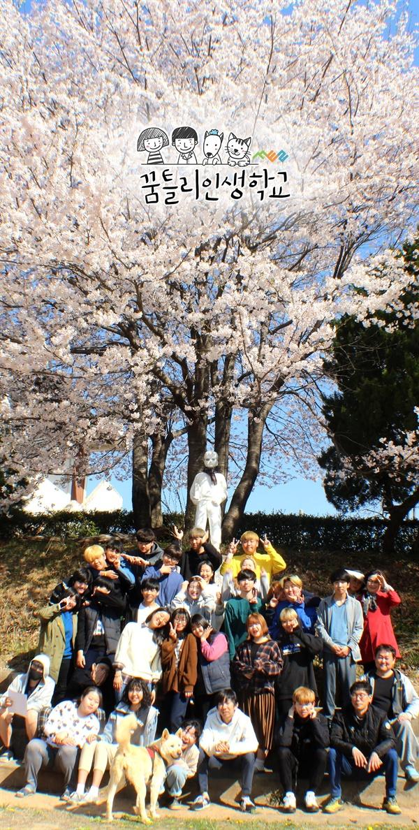 벚꽃사진 꿈틀리의 봄