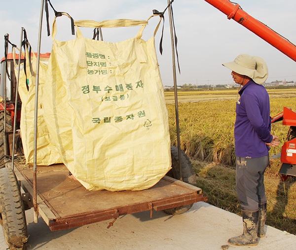 착잡한 얼굴로 빈 포대를 바라보고 있는 김홍근 농민.