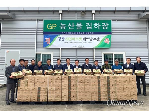 경북 경산시 경산포도영농조합법인은 샤인머스캣 포도를 베트남에 수출하기로 해 농가소득을 높이고 있다고 밝혔다. 지난 21일 샤인머스캣 포도를 수출하기 위해 선적을 한 모습.